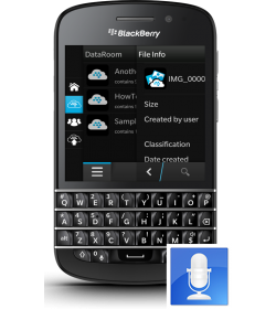 Remplacement Micro Q10