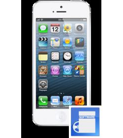 Restauration Flash Formatage IPhone 5